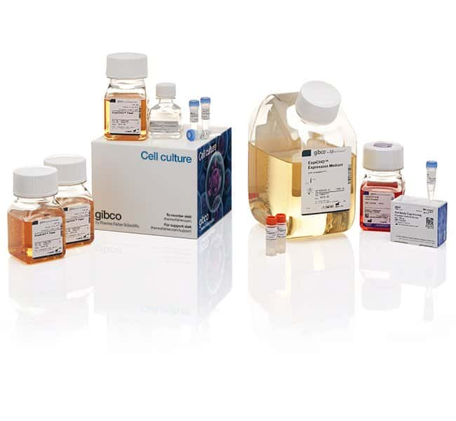 Gibco™ ExpiCHO™ Expression System Kit Complete starter kit Custom Peptide Synthesis and Protein Expression