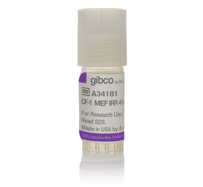 Gibco&trade;&nbsp;CF1 Mouse Embryonic Fibroblasts, irradiated 4 x 10<sup> 6</sup> cells Products
