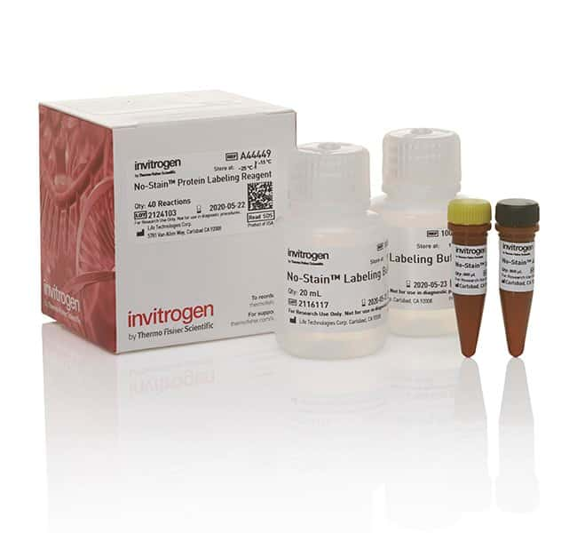 Invitrogen No-Stain Protein Labeling Reagent :Life Sciences:Protein Biology