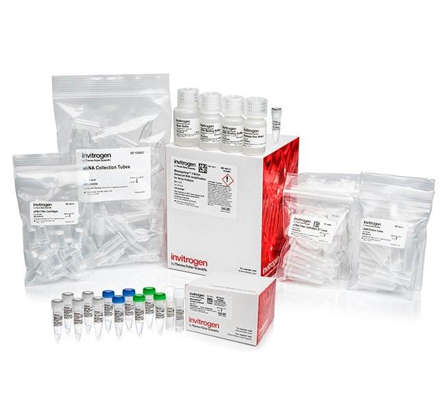 Invitrogen&trade;&nbsp;MessageAmp&trade; II-Biotin <i>Enhanced</i> aRNA Amplification Kit 20 reacciones Ver productos