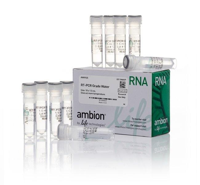 Invitrogen™RT-PCR Grade Water 10x1.5ml Life Science Wasser in Molekularbiologie-Qualität
