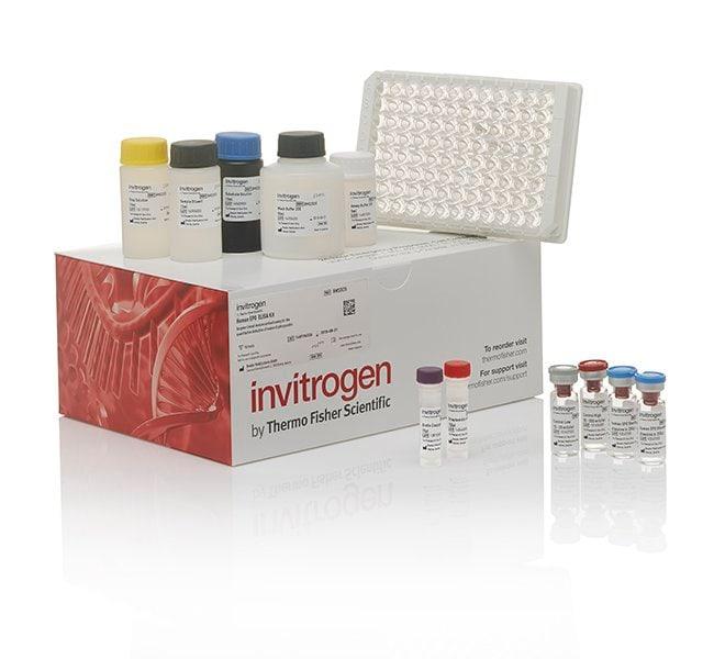 Invitrogen™IL-10 Mouse ELISA Kit 96 tests Invitrogen™IL-10 Mouse ELISA Kit