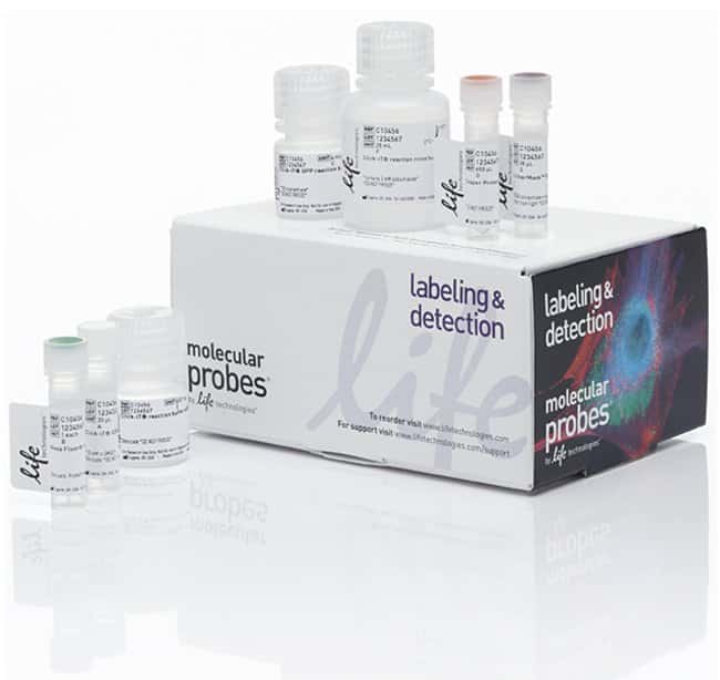 Molecular Probes Click-iT Plus OPP Alexa Fluor 488 Protein Synthesis Assay