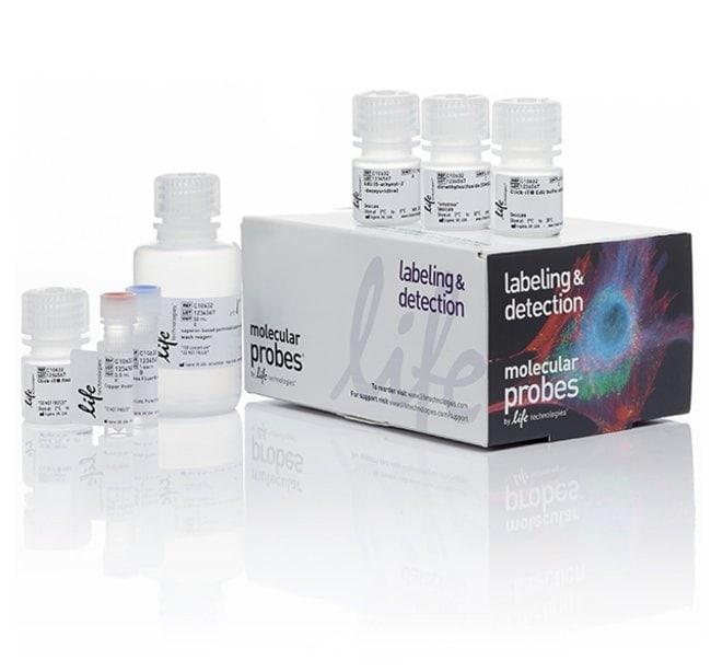 Molecular Probes™Click-iT™ Plus EdU Alexa Fluor™ 488 Flow Cytometry Assay Kit 50 assays Molecular Probes™Click-iT™ Plus EdU Alexa Fluor™ 488 Flow Cytometry Assay Kit
