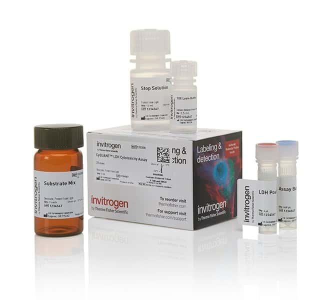 Invitrogen CyQUANT LDH Cytotoxicity Assay:Life Sciences:Cell Analysis