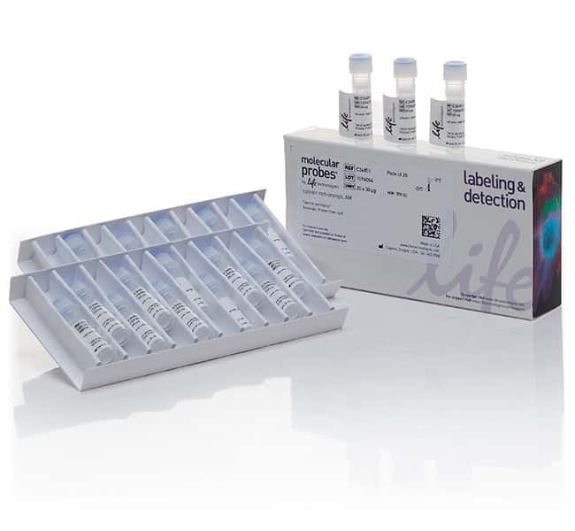 Molecular Probes™CellTrace™ Calcein Red-Orange, AM - Special Packaging 20x 50μg Reagenzien und Kits für Zellwachstum und -differenzierung