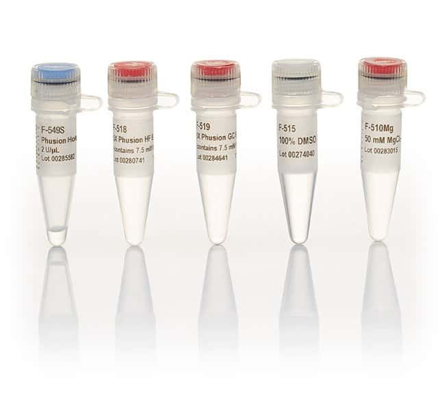 Thermo Scientific Phusion Hot Start II DNA Polymerase (2 U/L) Phusion Hot