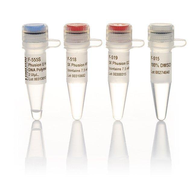 Thermo Scientific™Phusion U Hot Start DNA Polymerase 100 Units Thermo Scientific™Phusion U Hot Start DNA Polymerase