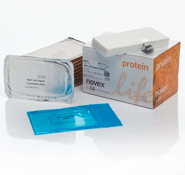 Invitrogen™ iBlot™ 2 Transfer Stacks, nitrocellulose, regular size Regular size, 0.2um pore size Electroblotting Equipment Accessories