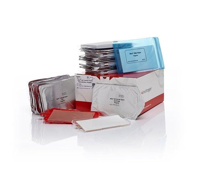 Invitrogen™iBlot™ Transfer Stack, nitrocellulose, regular size