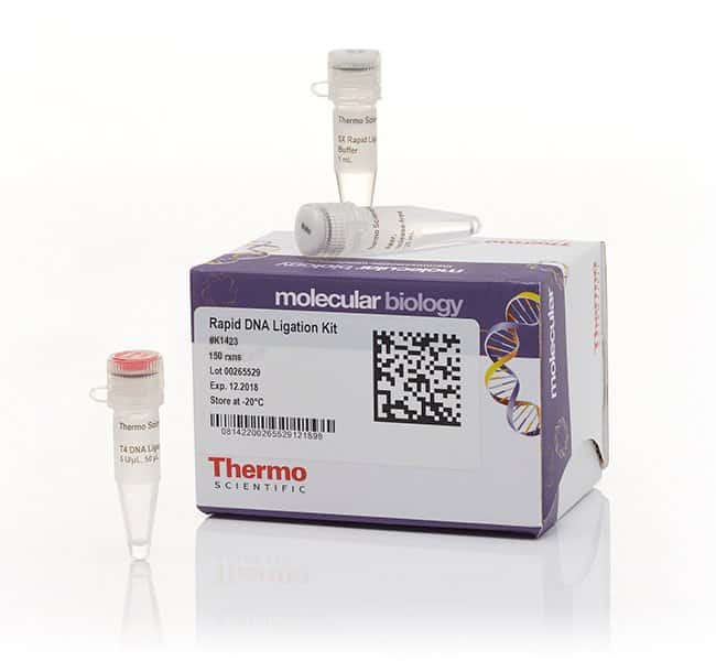 Thermo Scientific Rapid DNA Ligation Kit  for 150 reactions:Life Sciences
