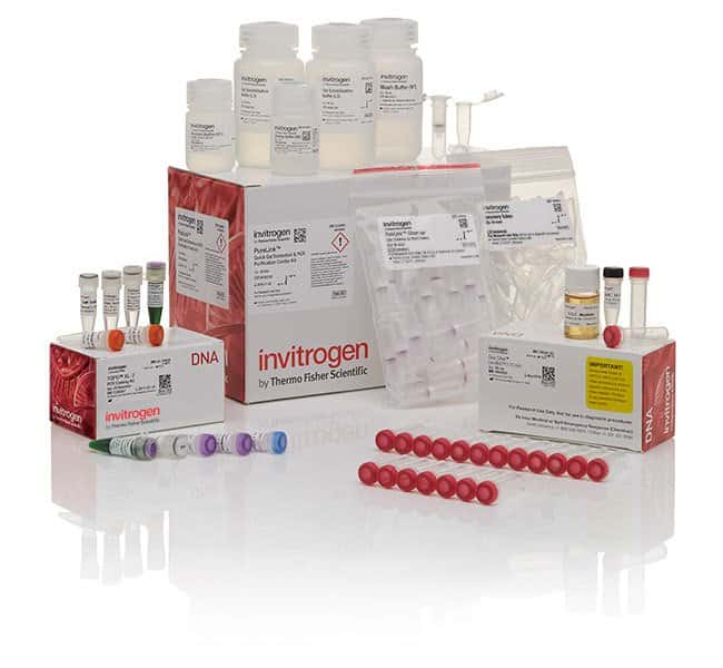 Invitrogen TOPO XL-2 Complete PCR Cloning Kit, with One Shot OmniMAX 2