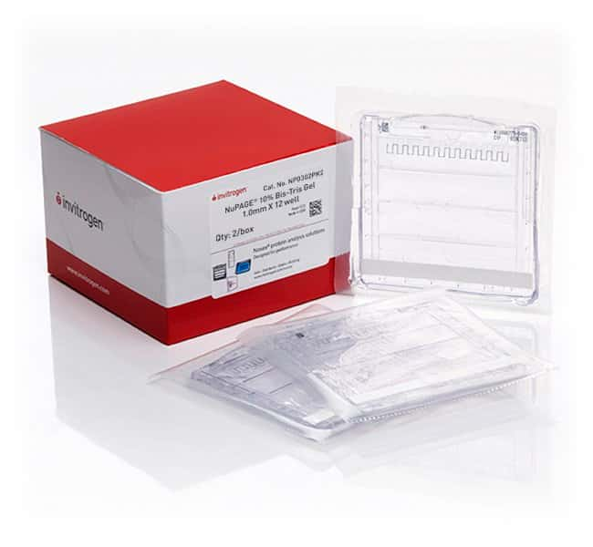 Invitrogen™ NuPAGE™ 10%, Bis-Tris, 1.0 mm, Mini Protein Gel, 12-well 2/pk Products