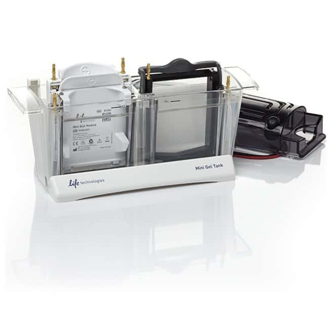 Invitrogen™Mini Gel Tank and Blot Module Set