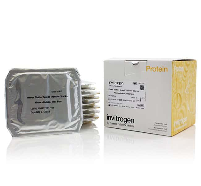 Invitrogen Power Blotter Select Transfer Stacks, nitrocellulose, mini:Electrophoresis,