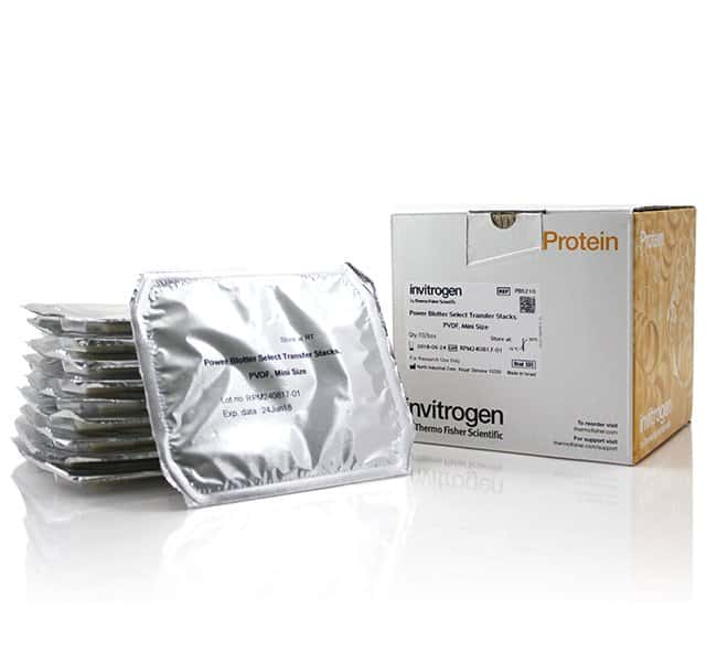 Invitrogen Power Blotter Select Transfer Stacks, PVDF, mini  For Use With
