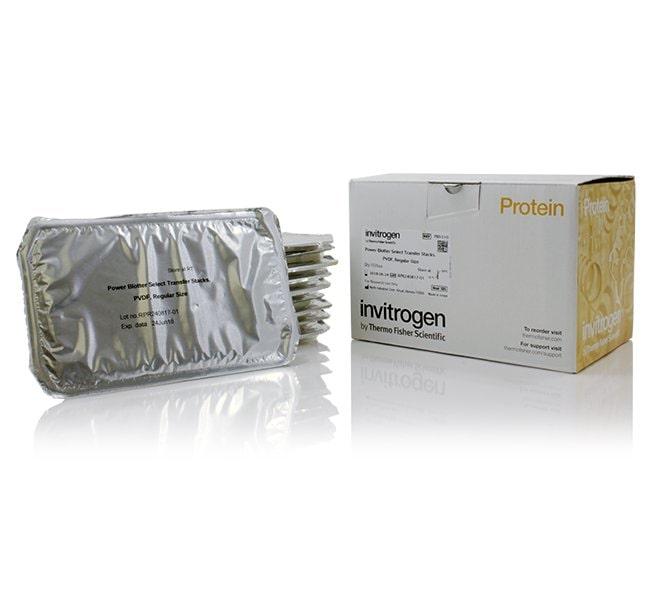 InvitrogenPower Blotter Select Transfer Stacks, PVDF, regular size:Western