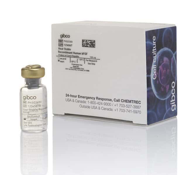 Gibco Heat Stable Recombinant Human bFGF:Life Sciences:Cell Culture