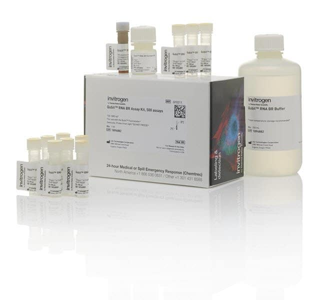 Invitrogen™ Qubit™ RNA BR Assay Kit