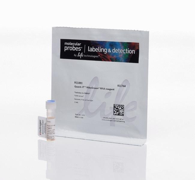 InvitrogenQuant-iT RiboGreen RNA Reagent 1mL:Molecular Biology Reagents