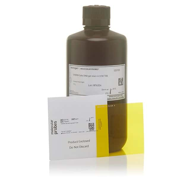 Invitrogen™ SYBR™ Safe DNA Gel Stain in 0.5X TBE 4 l Invitrogen™ SYBR™ Safe DNA Gel Stain in 0.5X TBE