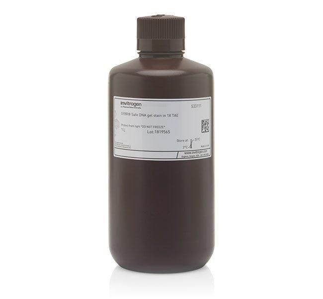 Invitrogen™SYBR™ Safe DNA Gel Stain in 1X TAE