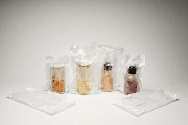 Double Bagged Bottled Fluid Thioglycollate Medium (FTM)::