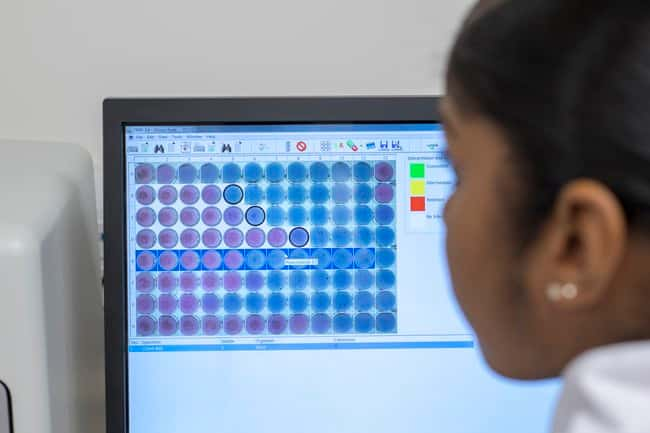 Thermo Scientific Sensititre SWIN Software System :Life Sciences:Microbiology